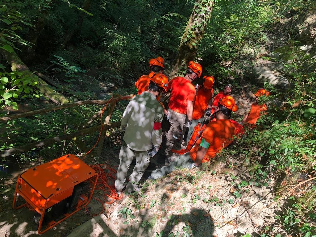 Groupe de pionnier en forêt