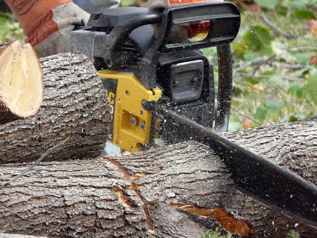 Découpe de tronc avec tronçonneuse